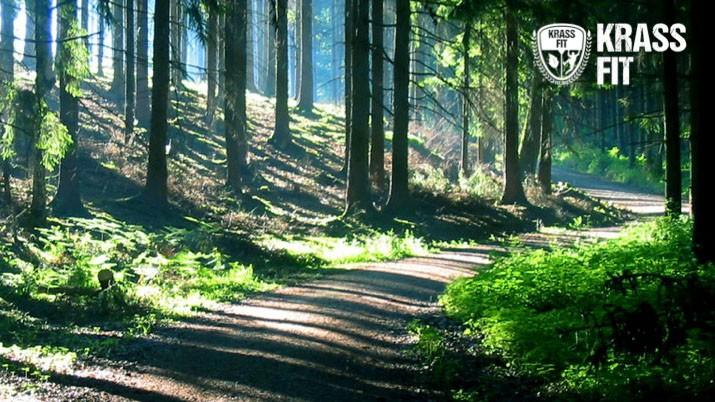 KrassFit Challenge - Rhein Main - Wald