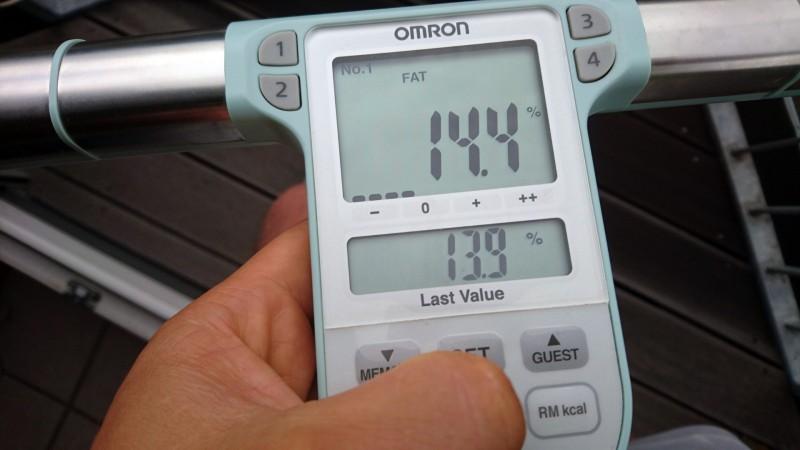 Die Anzeige des Körperfettanteils bei der Omron BF511