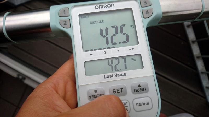 Ausgabe der Muskelmasse auf der Omron BF511