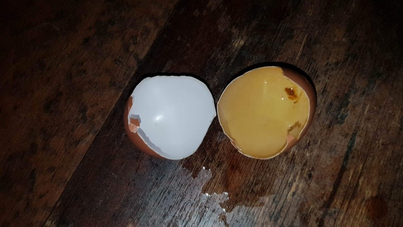 Zahnverfärbung durch gelbes Currypulver (Vorher/Nachher mit Eierschalen-Versuch)