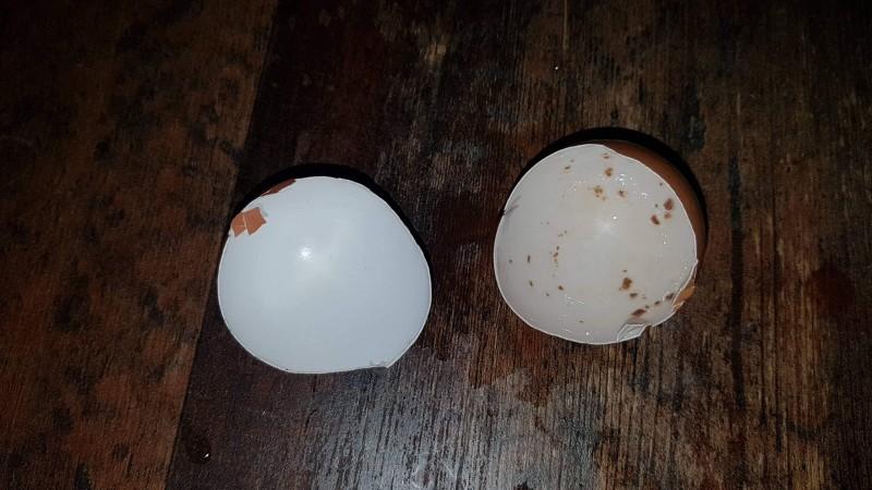 Zahnverfärbung durch Schokolade, Schoko Crossies (Vorher/Nachher mit Eierschalen-Versuch)